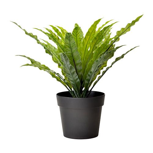 fejka-kunstig-potteplante__0170397_PE324416_S4
